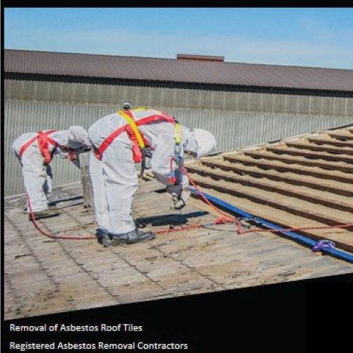 Asbestos 01